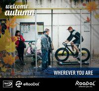 roodol_redes-sociales-7c